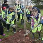 Planting a tree in Eastville Park in Bristol.